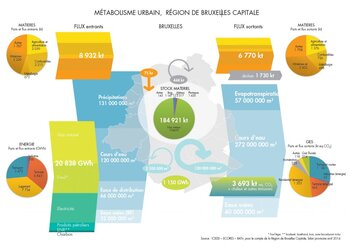 General overview of Brussels urban metabolism in 2011