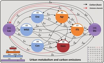 Metabolic network model for urban carbon metabolism
